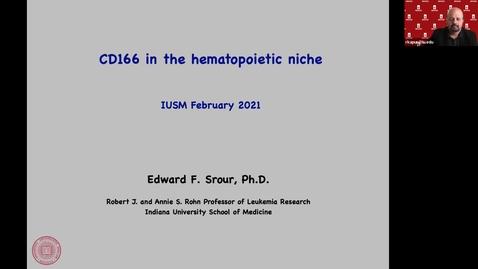 "Thumbnail for entry IUSCCC Virtual Seminar Series 2_11_2021: ""CD166 in the hematopoietic niche"" Dr. Eddy Srour, Robert J. and Annie S. Rohn Professor of Leukemia Research, IUSM"