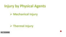 Thumbnail for entry FW FHD 2017 Feb 13 Environmental Pathology Part 2