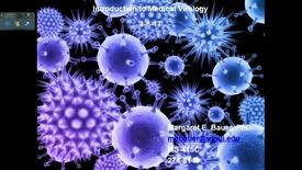 Thumbnail for entry IN HD 3/6/2017: Viral anatomy and replication, Adenoviruses, Papovaviruses, and Parvoviruses (DNA Viruses)