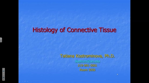 Thumbnail for entry Connective Tissue - 2017 Aug 21 04:40:31