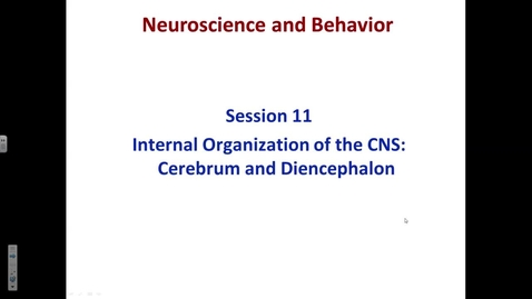 Thumbnail for entry NW, N&B session 11 cerebral and diencephalon internal anatomy