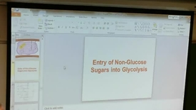 Thumbnail for entry Glycolysis 4