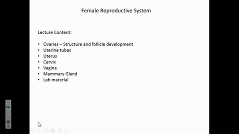 Thumbnail for entry IN HS 10/28/2016: Histology of the Female Reproductive System
