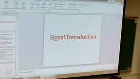 Thumbnail for entry Signal Transduction 1