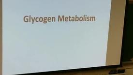 Thumbnail for entry Glycogen-1