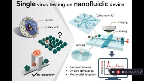 "Thumbnail for entry 2021-Mi Zhang - ""Single virus testing on Nanofluidic device"""
