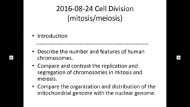 Thumbnail for entry WL | MCT | 160824 | Leung | Cell Division (Mitosis/Meiosis)