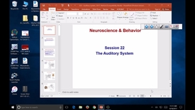 Thumbnail for entry S22. SB, N&B, auditory system, Marfurt