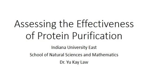 Thumbnail for entry Assessing the Effectiveness of Protein Purification