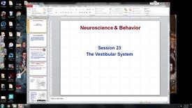 Thumbnail for entry S23, NW, N&B,. vestibular system, Marfurt 2017