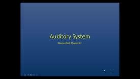 Thumbnail for entry Evv-N&B-Auditory System - 2017 Apr 18 10:58:35