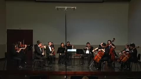 Thumbnail for entry Chamber Orchestra