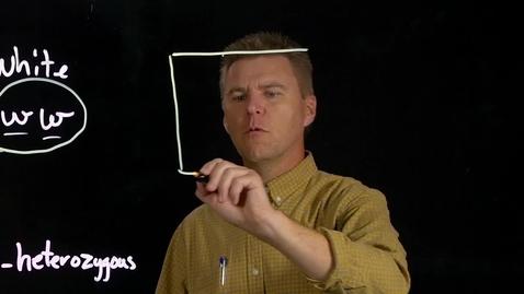 Thumbnail for entry LightBoard (Sample)