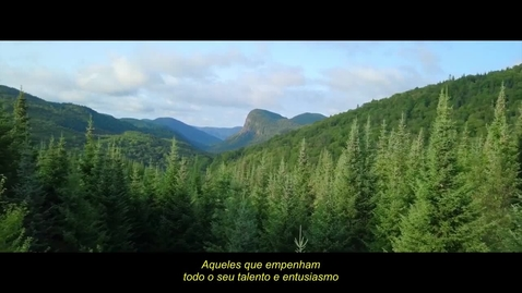 Thumbnail for entry Arauco sows the seeds for sustainable growth with IBM Rapid Move and IBM Cloud