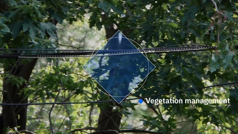 Thumbnail for entry Weather Company Vegetation Management – Predict