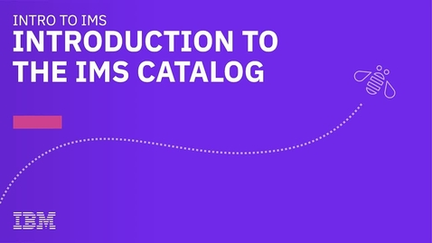 Thumbnail for entry Introduction to the IMS Catalog
