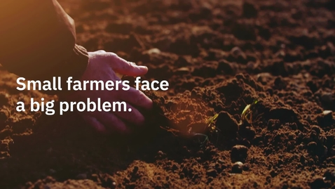 Thumbnail for entry Agrolly - helping small-scale farmers navigate climate changes