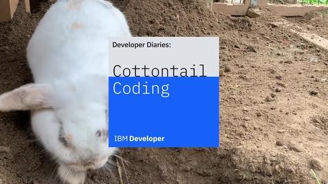 Thumbnail for entry Developer Diaries: Key benefits of app modernization with Niklas Heidloff