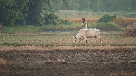 Thumbnail for entry iKure + IBM: La IA refuerza la asistencia médica en India, llevando resiliencia a las comunidades rurales