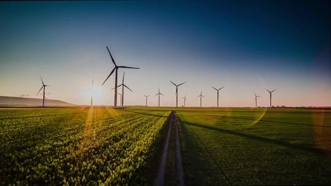 Thumbnail for entry Energinet + IBM: Harnessing renewable energy using AI