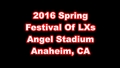 2016 Festival Of LXs