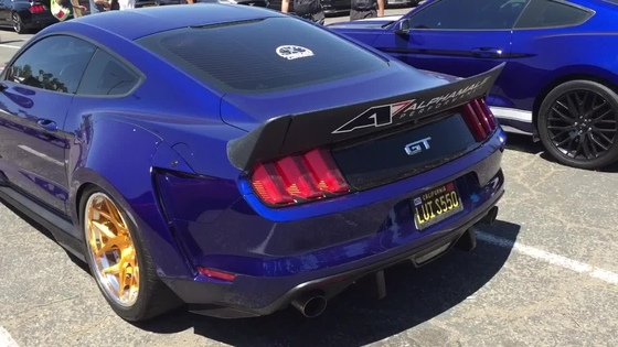 Widebody Mustang walk around from Knotts