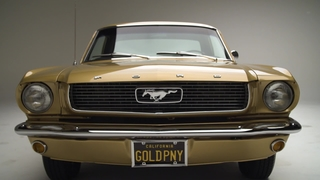 Gold Anniversary Mustang