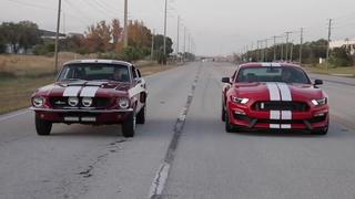 Dream Giveaway Shelby Mustangs