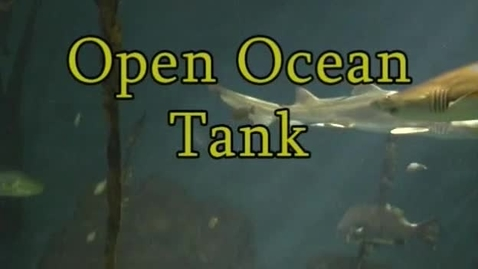 Thumbnail for entry Open Ocean Tank Observation (Module 4)