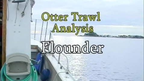 Thumbnail for entry Flounder (Module 3)