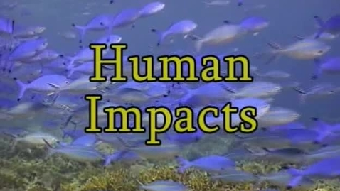 Thumbnail for entry Human Impacts (Module 7)