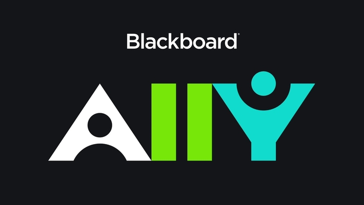 Introducing Blackboard Ally
