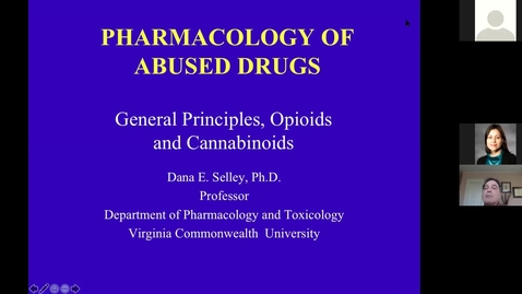 Thumbnail for entry 201210 - M2 - 10am - MBB - General Principles, Opioids, and Cannabinoids - Selley