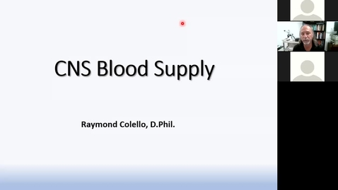 Thumbnail for entry 201022 - M2 - 8am - MBB - Vascular Supply of the CNS - Colello