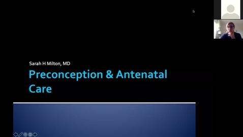 Thumbnail for entry 210512-M1-11am-REPR-Preconception/Antenatal Care-Milton