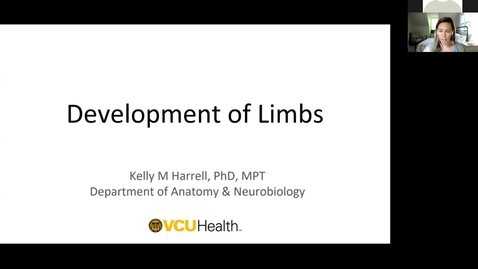 Thumbnail for entry 210430 - M1 - 8am - REPR - Embryology: Limb Development - Harrell