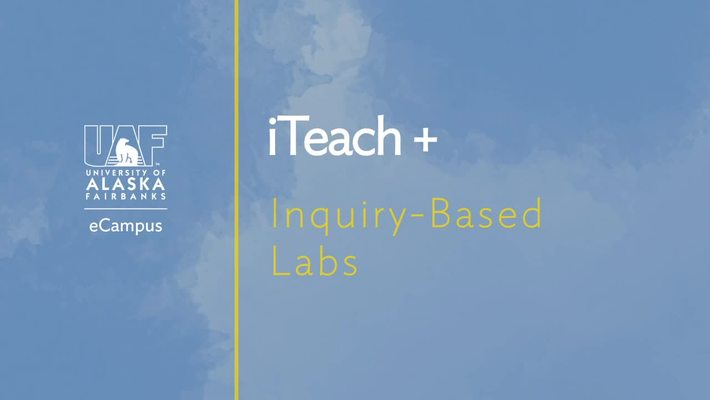 Inquiry-Based Online Labs