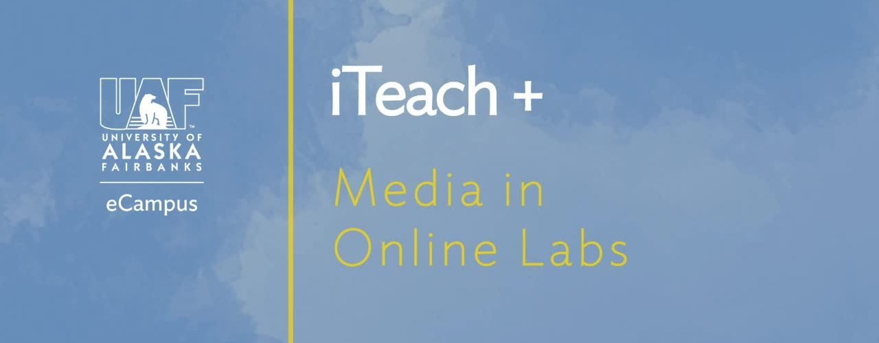 Media in Online Labs