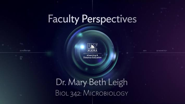 Faculty Perspectives – Mary Beth Leigh