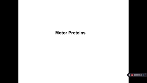 Thumbnail for entry Motor Proteins