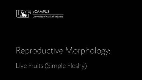 Thumbnail for entry Reproductive Morphology: Live Fruits, Simple Fleshy