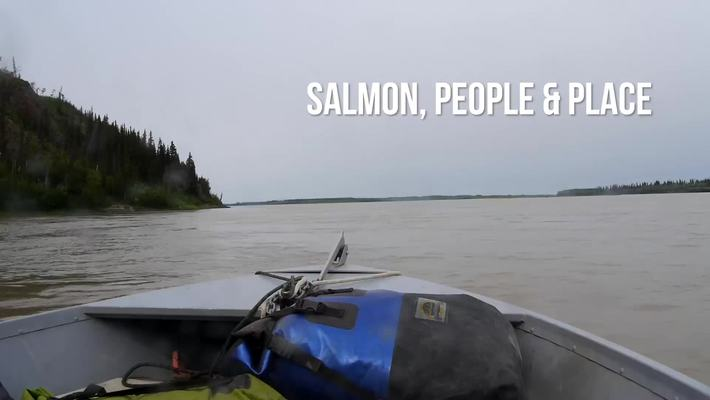 FISH 394: Salmon, People and Place (Course Teaser)