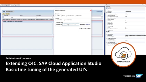 Thumbnail for entry UI Fine Tuning - Extending SAP Cloud for Customer
