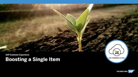 Thumbnail for entry Boosting a Single Item - SAP Commerce Cloud