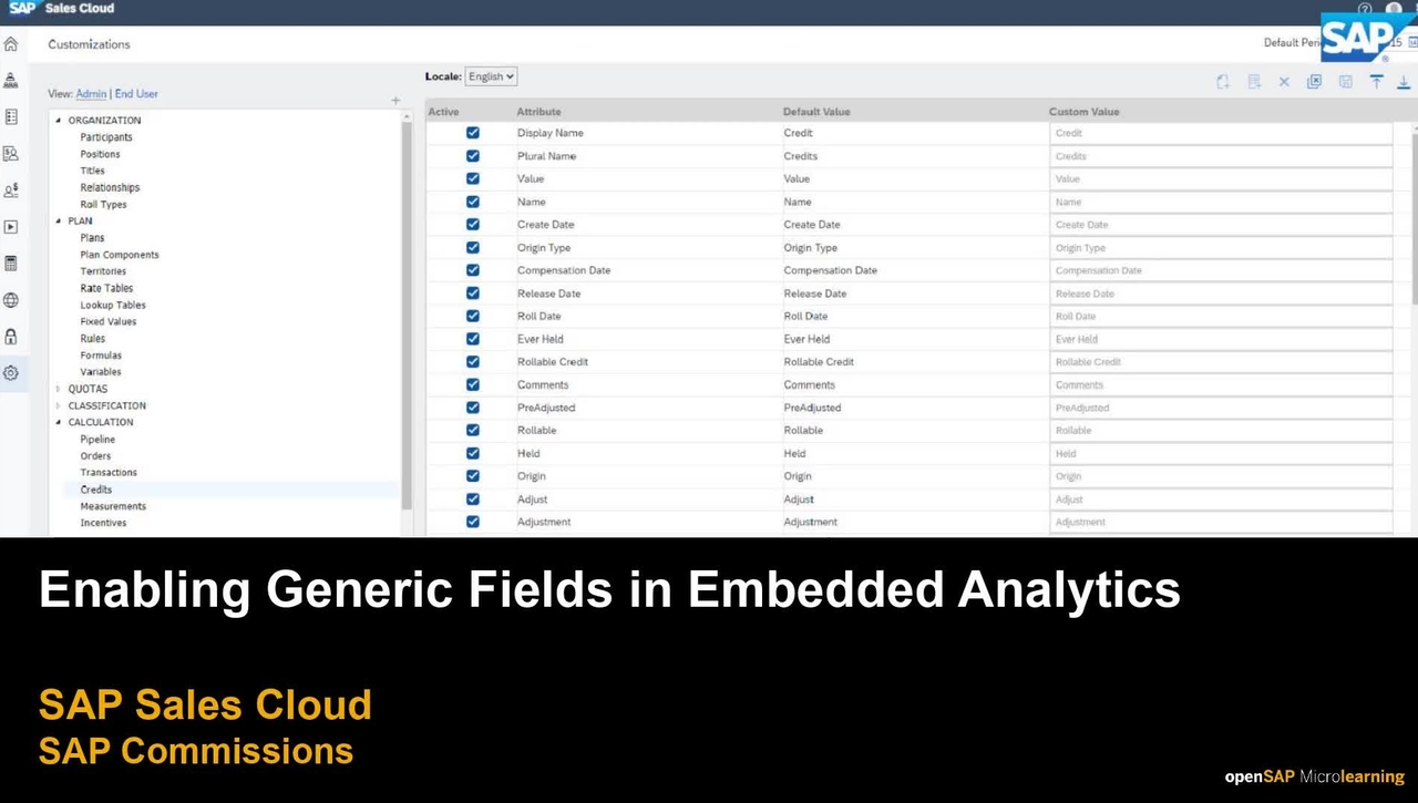 Enabling Generic Fields in Embedded Analytics for SAP Commissions