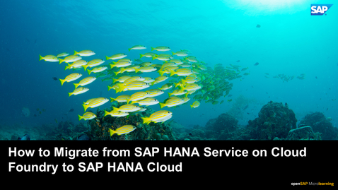 Thumbnail for entry How to Migrate from SAP HANA Service on Cloud Foundry to SAP HANA Cloud