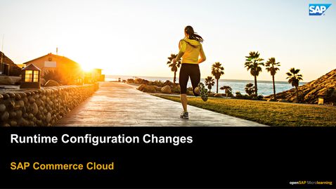 Thumbnail for entry Making Runtime Configuration Changes in Backoffice Framework - SAP Commerce Cloud