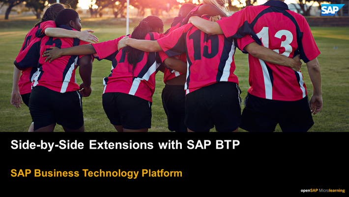 Side-by-Side Extensions on SAP BTP - SAP  Business Technology Platform