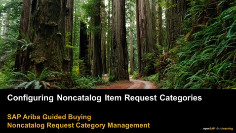 Thumbnail for entry Configuring Noncatalog Item Request Categories - SAP Ariba Guided Buying