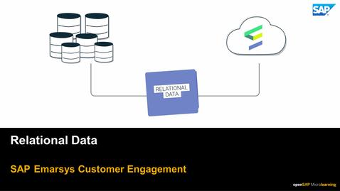 Thumbnail for entry Relational Data - SAP Emarsys Customer Engagament
